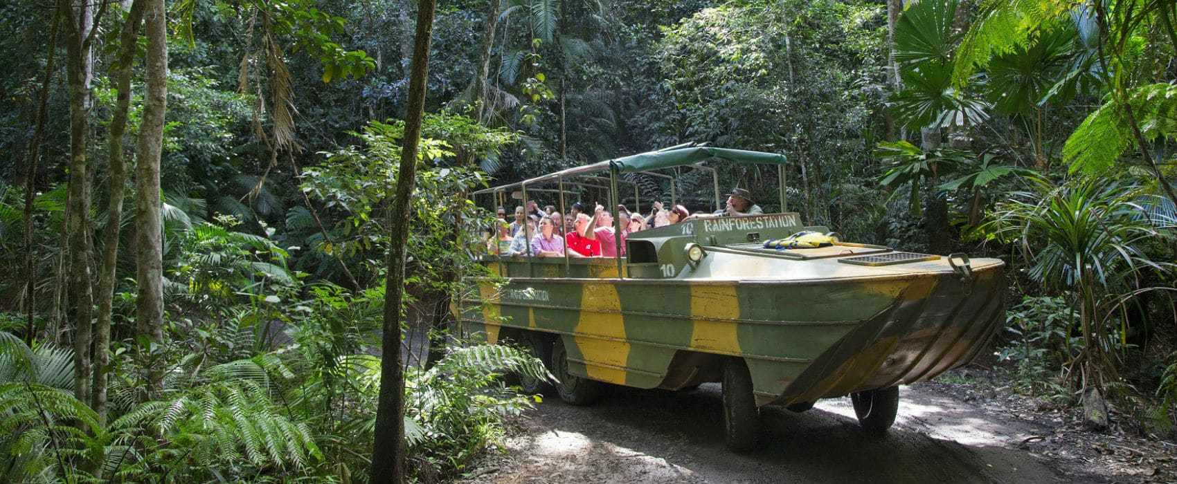 Attractions And Tour Packages In The Tropical Rainforest