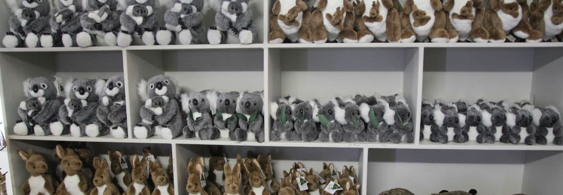 kuranda gift shop koala soft toy rainforestation nature park