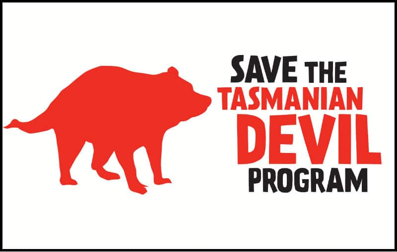 save-tasmanian-devil