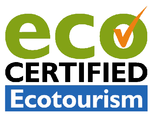 ecotourism rainforestation kuranda