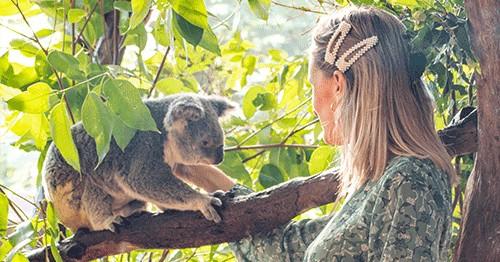 behind the scenes wildlife tour rainforestation