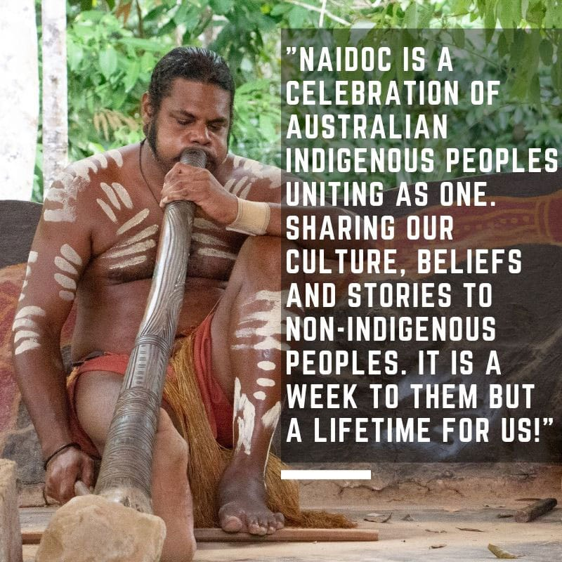 cairns indigenous culture naidoc week