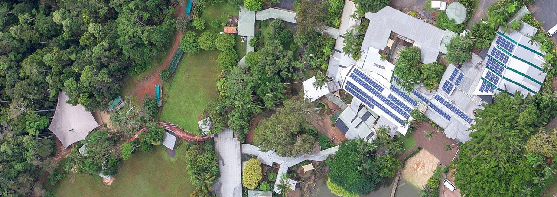 cairns eco tourism rainforestation nature park