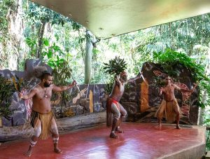 Pamagirri Aboriginal Experience Shake A Leg Dance