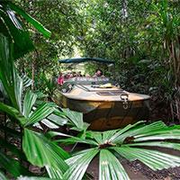 Army Duck Tour Rainforestation