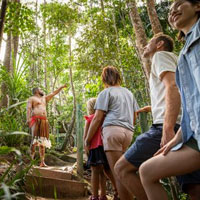 Pamagirri Rainforest Walkabout Walk