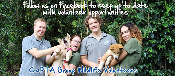 Capta Volunteers Facebook