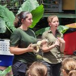 Snake Presentation With Wildlife Volunteers